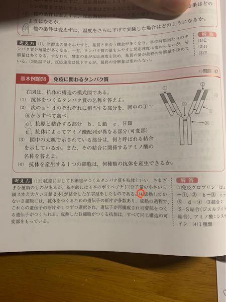 高校生物 免疫 (4)の問題も解説も分かりません、、 どなたか教えてくださいな