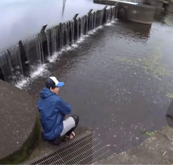 川などでよく見かけるこういった構造のものってなんて言うんでしょうか?