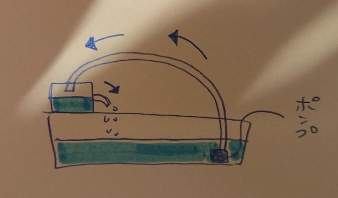 ろ過フィルター(自作)を水中に沈めるべきですか? ろ過フィルター(容器にろ材とウールマット入)を追加するにあたり、 ソーラーポンプにチューブをつけて水を吸い上げ循環させようと思うのですが、ソーラーは蓄電式ではあるものの、天気次第で停止するときもあると思います。 図のような状態にしようと思っていたのですが、ポンプ停止時にフィルター内に水が滞留してしまうと思います。 バクテリアが死んでしまう可能性ありますよね? それなら止まった時の事を踏まえ、 水中に投げていた方が得策でしょうか? 今はメダカしかいませんが金魚を入れる予定です。