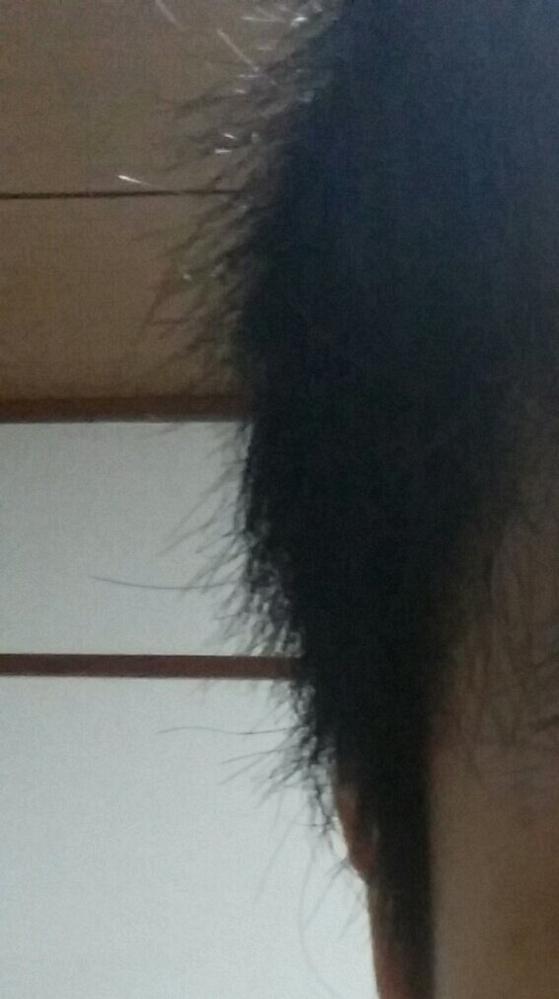髪が寝ないです。サボテンみたいにチクチク飛び出るし何より真横に出てるのですがどうしてこうなるのですか? 癖毛というか、昔美容院に行ってた時に髪の毛が行き場所を失ってうねると言ってましたがどれだけ...