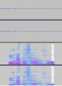 audacityでリップノイズが消せずに困っています。アドバイスをお願いします。 朗読や声劇のセリフの最後「●●だろ?」といった部分に「ぷちっ」とリップノイズが入ってしまいます。 これを奮闘しているのですが、全然消せません。アドバイスをお願いします。  波形・スペクトグラム両方を見てリップノイズの該当箇所は分かりました。 その部分を「修正」しようとしてもエラーになりできません。 カットすると...
