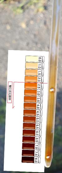 エンジンオイル交換 色の数字でいうと いくつになりますか?  追記:エンジンオイルが多いようにみえますが、再度計測したら適正量になりました。
