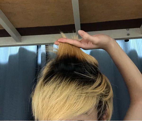 金髪(ブリーチ2回)から。明るめの茶髪にしたいです。(男) 金髪にしてから2.5ヶ月経っていて、本当にプリンが酷く、全体的に根本4センチは黒です。 美容院でカラーしようと思うのですが、メニューで単に「カラー 」を選択すれば良いのでしょうか? 根本の黒髪の部分と金髪の部分とでは、色の入り度合いが違ってきてしまうのではないかと心配です。