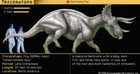 トリケラトプスはティラノサウルスに対抗し得るくらいの戦闘力を持っていたのですかね?