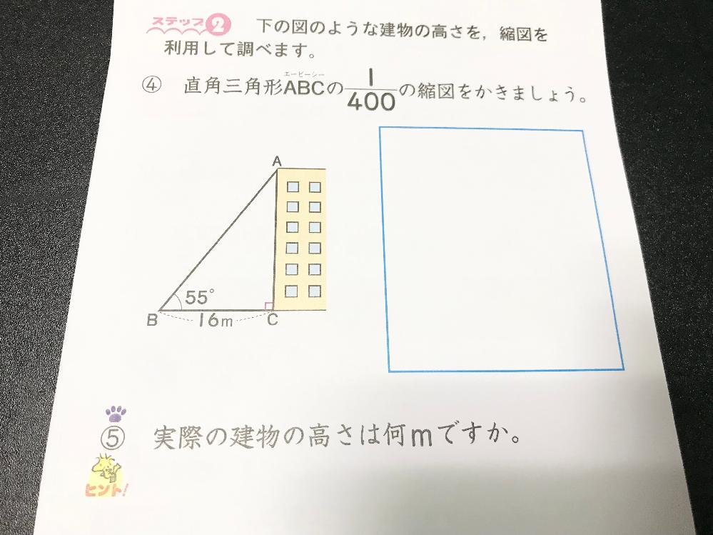 小6の算数の問題です。 計算してみたら、④の縮図は辺BCは4cm、辺ACは5.7cmになりました。 それを踏まえて⑤を計算したら5.7×400=2280になったので、縮図の高さは22.8mにな...