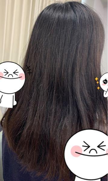 髪質改善とストパと縮毛矯正どれのほうが長く綺麗になりますでしょうか…?