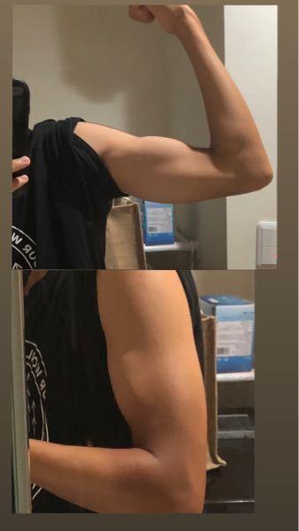 高2です!もっと腕に筋肉をつけて太くするためにはなにをすれば良いでしょか?ダンベル5キロと3キロの2つだけ持ってます。