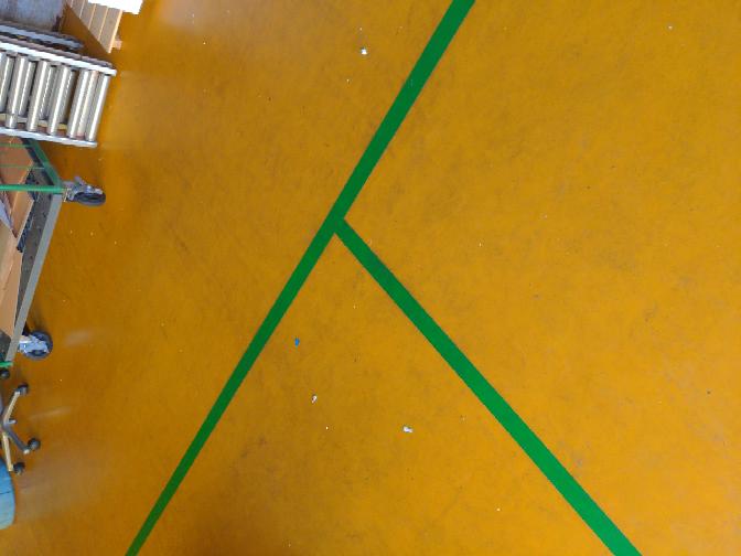 汚れ落とし 素人です。アドバイスお願いします。 現場の塗装に足跡がこびりつき普通の洗剤で磨いても落ちません。 塗装が剥げないで足跡だけ落とせる洗浄剤があれば教えて下さい。