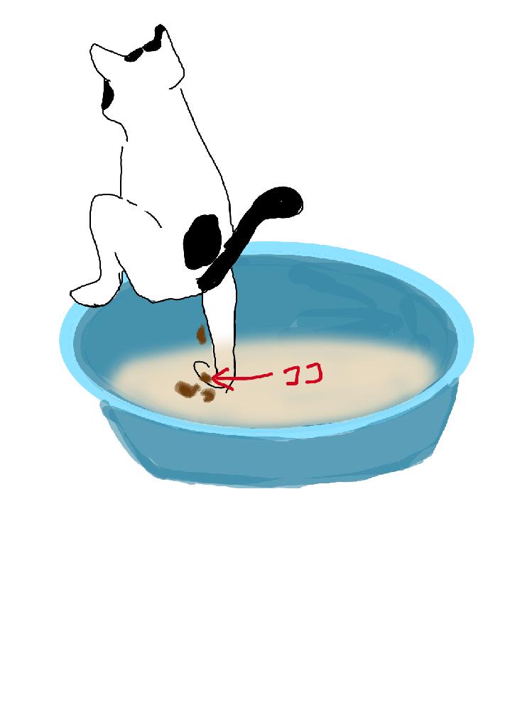 猫ちゃんについて質問です。 最近、3匹目の猫ちゃんを保護したんですが、その子がトイレ下手くそで(汗) イラストの様に排便をするとき、うんちが落ちたところに足があるため直で付いちゃいます。 4kgの猫ちゃんで、トイレは30~40cm幅のタライを使ってます。 ※2回トイレを変えてますが改善しません。 おまる式猫トイレが気になってるんですが慣れるのに時間がかかるだったり、砂をかけないから臭いがすごいとかで少し買うのを躊躇っています。 (臭いは毎回足を拭いたりうんち付いたまま歩かれるぐらいならすぐ掃除するようにして我慢できそうです。) 長くなりましたが同じような経験をしている先輩方に改善の方法を教えていただけると幸いですm(_ _)m