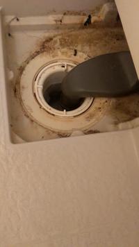 排水溝の掃除の仕方が分かりません。アパートに今、すんでいます。写真はヘアトラップを外した状態です。