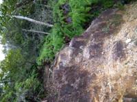 この崖が怖くて引き返したのですが、あなたなら登りますか?