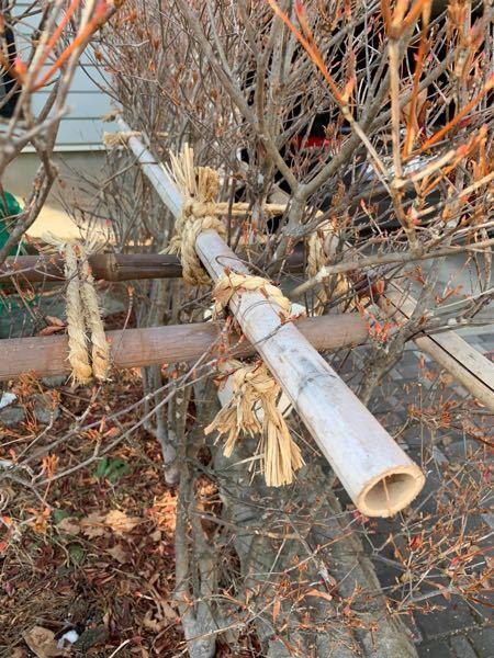 竹垣の結び方、どんな結び方をしてるか名前を教えてください。男結び?