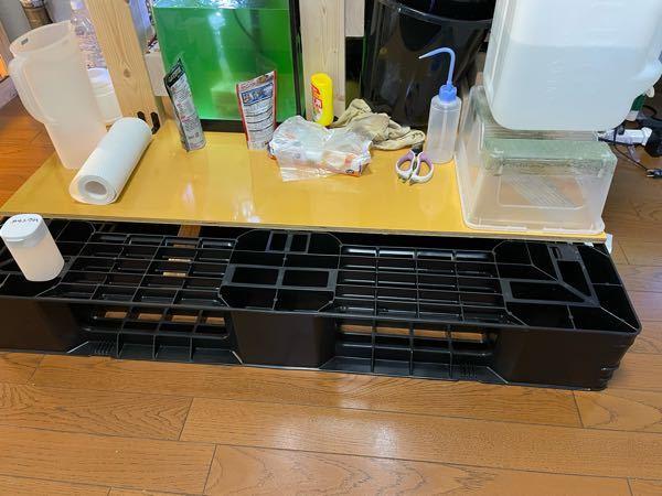 2階に90cm水槽を置くに調べると水槽の下にコンパネなどを敷いて重さを分散させたほうがいいと聞いたので、コンパネではなく110cm四方のプラスチックパレットを下に敷いて90cm水槽と60cm水槽を置いていますが、コンパ ネの方が良いでしょうか?プラスチックパレットの方が耐久性もありそうで置いてみたのですが...