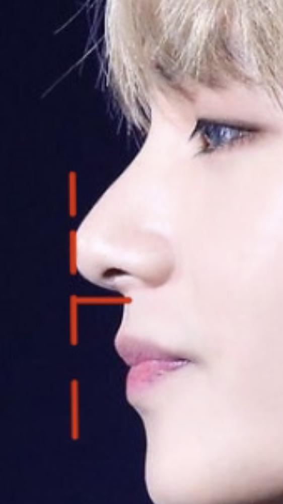 btsのテヒョンさんの横顔です この赤線を引いた鼻の高さは 一体何cmぐらいだと推測されますか?