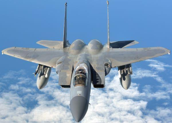 戦闘機の知名度 - ・F-1「フューリー」(旧名FJ) ・F-2「バンシー」(旧名F2H) ・F-3「デモン」(旧名F3H) ・F-4「ファントムII」(旧名F4H) ・F-5「フリーダムファイター」(初命名) ・F-6「スカイレイ」(旧名F4D) ・F-7「シーダート」(旧名XF2Y) ・F-8「クルーセイダー」(旧名F8U) ・F-9「パンサー/クーガー」(旧名F9F) ・F-10「スカイナイト」(旧名F3D) ・F-11「タイガー」(旧名F11F) ・YF-12「ブラックバード」 ・F-14「トムキャット」 ・F-15「イーグル」 ・F-16「ファイティングファルコン」 こんなに沢山あるのに、この中で、私の記憶に残っているのは、 ・F-4「ファントムII」 ・F-14「トムキャット」 ・F-15「イーグル」 あと、ギリギリ ・F-16「ファイティングファルコン」 ぐらいです。 なぜ、これら戦闘機だけ、知名度が高いのでしょう?