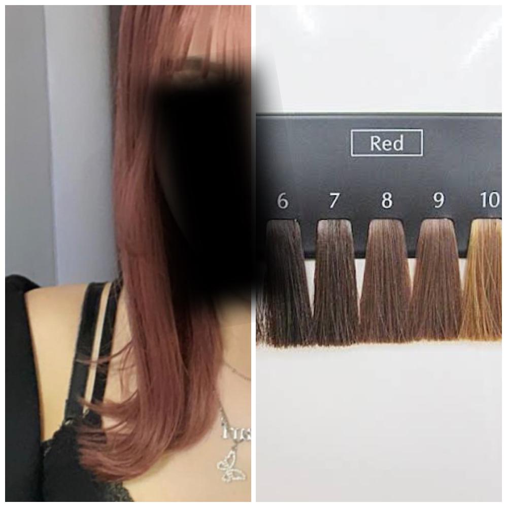 現在の髪色が写真(右)でいう8〜9くらいなのですが、1回のブリーチで左の髪色になれるでしょうか? 最後に黒染めしたのが14ヶ月くらい前でそこから何回か切ってていまは胸元くらいの長さです。 一ヶ月後に染めようと思っているのですが痛むの覚悟でそれまでにミストブリーチで少しでも明るくしようかなとすら考えてます、、 金欠なものでなるべく安く済ませたいのですがトリプルカラーとなると平均で1万くらいか買ってしまうので、、 あとこの左の髪色はなんという色なのでしょうか??このこの髪色がめっちゃ好きで調べてるんですけどピンとくる髪色が出てこなくて、、 教えてくれると嬉しいです!