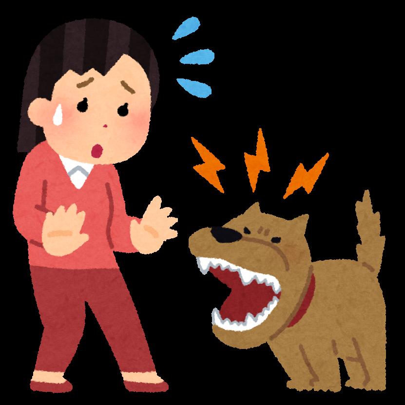 犬の騒音に対しての対応についての質問です。 私は住宅密集地に住んでいて、前の家と両隣にウルサイ犬が居ます。 特に前の家のスタンダードプードルはウルサかったので、苦情攻撃、警察通報で完全に沈静化しました。 裏のウルサイ犬に対しても、方々から苦情、通報がくるようにして沈静化させました。 後は両隣の1日1回~3回の無駄吠えの家族に対しての攻撃ですが、両隣は私に対して親切なので攻撃するのはどうかと思っています。 現在は法廷基準内40デシベルの「犬の嫌がる音」を出して「吠え」を沈静しています。 鳴らさないと「吠えます」 私は我慢するのは嫌で攻撃派なのですが、貴方様なら両隣も苦情警察の波状攻撃をしますか? それとも40デシベルの「犬の嫌がる音」を出して黙らせますか?