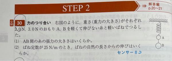 この問題で、重力加速度を掛けずにそのままAとBにはたらく重力を2.0N、3.0Nにするのは何故ですか?