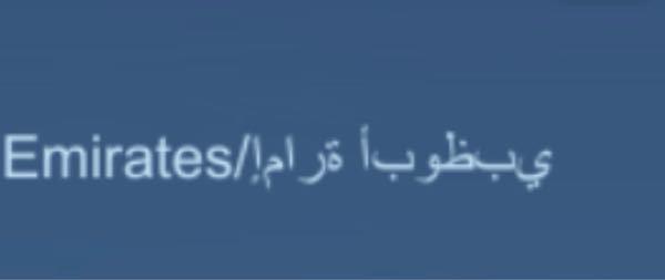 この画像のアラビア語(?)の部分はなんと書いてあるんですか?
