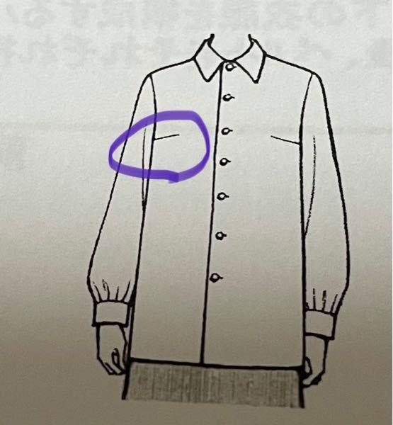 急募 衣服のこの部分のことをなんて言うのでしょうか、、?