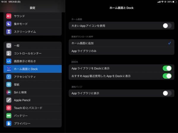 """Apple商品に詳しい方ご回答お願い致します。 iPad mini 第5世代を使用している者です。 設定でホーム画面とdockというところで 写真添付のような画面になるのですが アップデートを最新にしても """"今日の表示""""をホーム画面に設定←という 項目が出てきません。 ネットで調べたやり方を試してみても この状況からアップデートされないのですが 何か方法があれば教えてほしいです。 (説明が下手で分かりづらければ申し訳ございません)"""