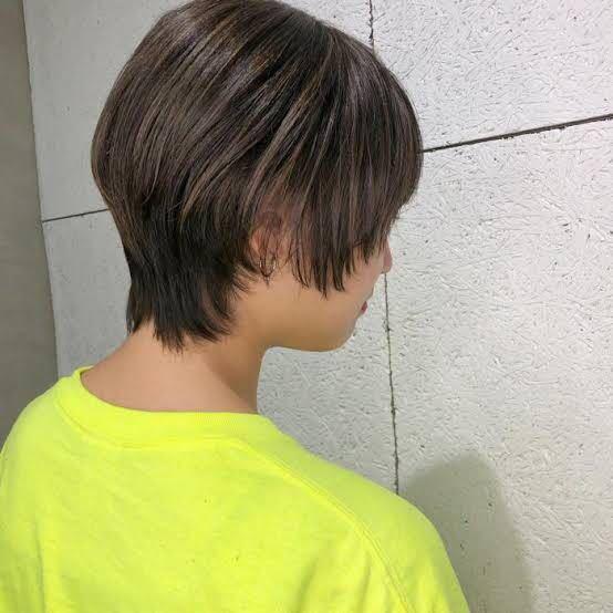 毛量が多めで髪質が硬めの人は、マッシュウルフの髪型に出来ないのですか? 美容師さんに聞いたら「○○さんは毛量が多めで髪質が硬めだからやめたほうがいいよ」と言われました…(´;ω;`) 理想としてはこんな感じにしたいのですが、やめておいたほうがいいですか?