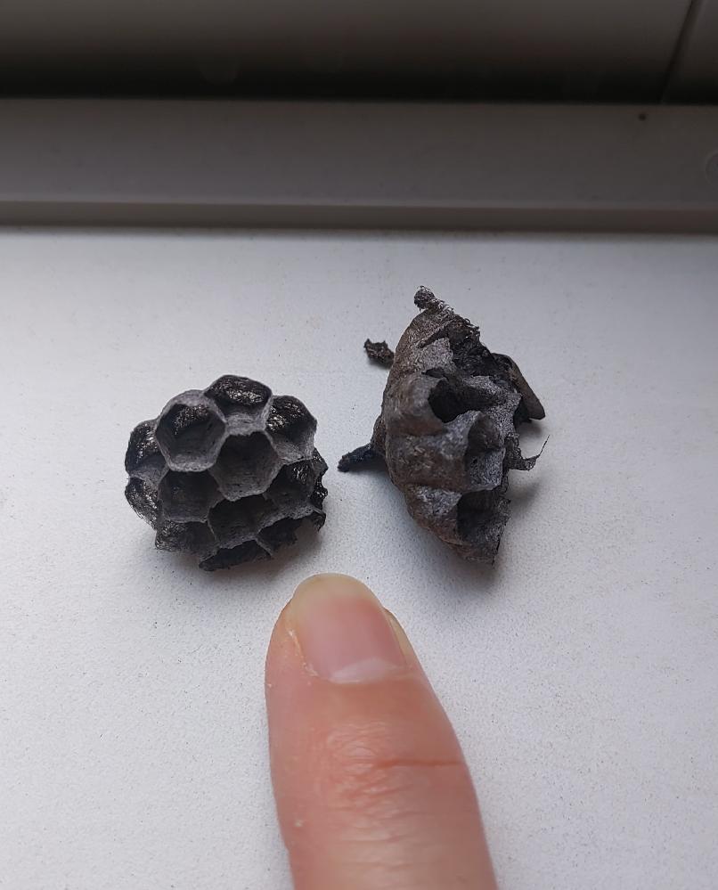これは何の蜂の巣ですか? 人差し指と比べても小さいですよね。 あまり開けない窓をあけたら、サッシに転がっていました。
