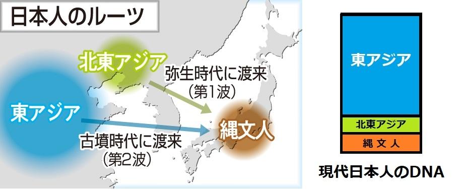 今回の金沢大学、鳥取大学、ダブリン大学トリニティ・カレッジの発表によって、朝鮮半島は、日本人のルーツの主な構成員から完全に外れたという事でよろしいでしょうか? . ↓パレオゲノミクスで解明された日本人の三重構造【金沢大学 2021年9月21日】 https://www.kanazawa-u.ac.jp/rd/96414 ↓古代ゲノミクスは、日本の集団の三者起源を明らかにする【金沢大学論文】 https://www.science.org/doi/10.1126/sciadv.abh2419#F5 韓国が今まで言ってきた「日本人のルーツ」について 最初は ---------- 日本人のルーツは朝鮮人である。 ---------- 日本人が「縄文人」と「渡来系弥生人」との混血であることが判明してからは、 ---------- 日本人は先住民と朝鮮人との混血である。 ---------- 【↓根拠(エビデンス)】 ↓「日本人のルーツは韓半島系混血」(中央日報) https://s.japanese.joins.com/JArticle/162418?sectcode=410&servcode=400 今回の金沢大学、鳥取大学、ダブリン大学トリニティ・カレッジの発表によって ---------- 日本人は先住民と黄河系(=Han)人との混血である。 ---------- ↑↓朝鮮半島は、日本人のルーツの主な構成員から完全に外れた。 関連:ルーツ、縄文、弥生、古墳、慰安婦、起源、徴用工、日韓
