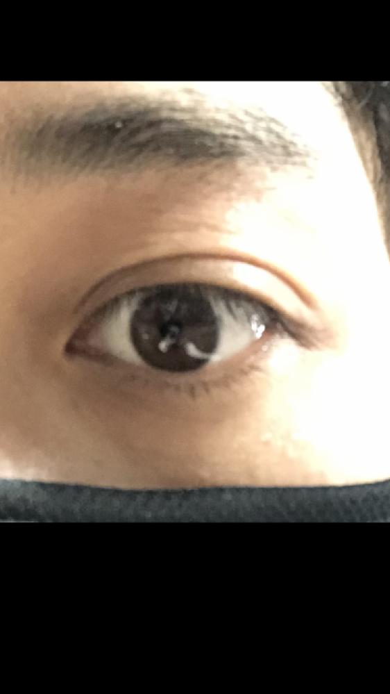 この目はつり目でしょうか? タレ目でしょうか? 個人的にはどちらでも無いかなと思うんですが...。