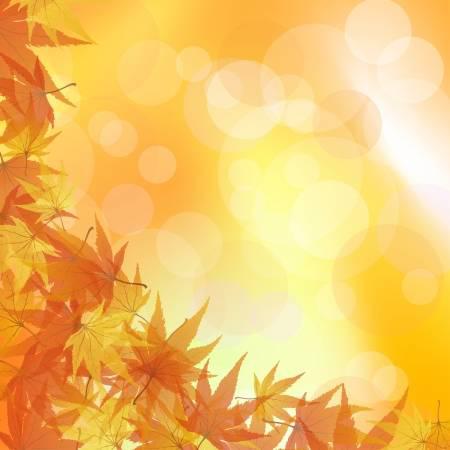 秋といったら何色のイメージを思い浮かびますか?