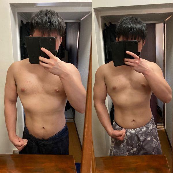 週3回のトレーニングでは、筋肉って一ヶ月でこのぐらいの変化しかないのでしょうか? どうしたらもっと増えますか? どこの筋肉増やしたらいい感じになりますか?