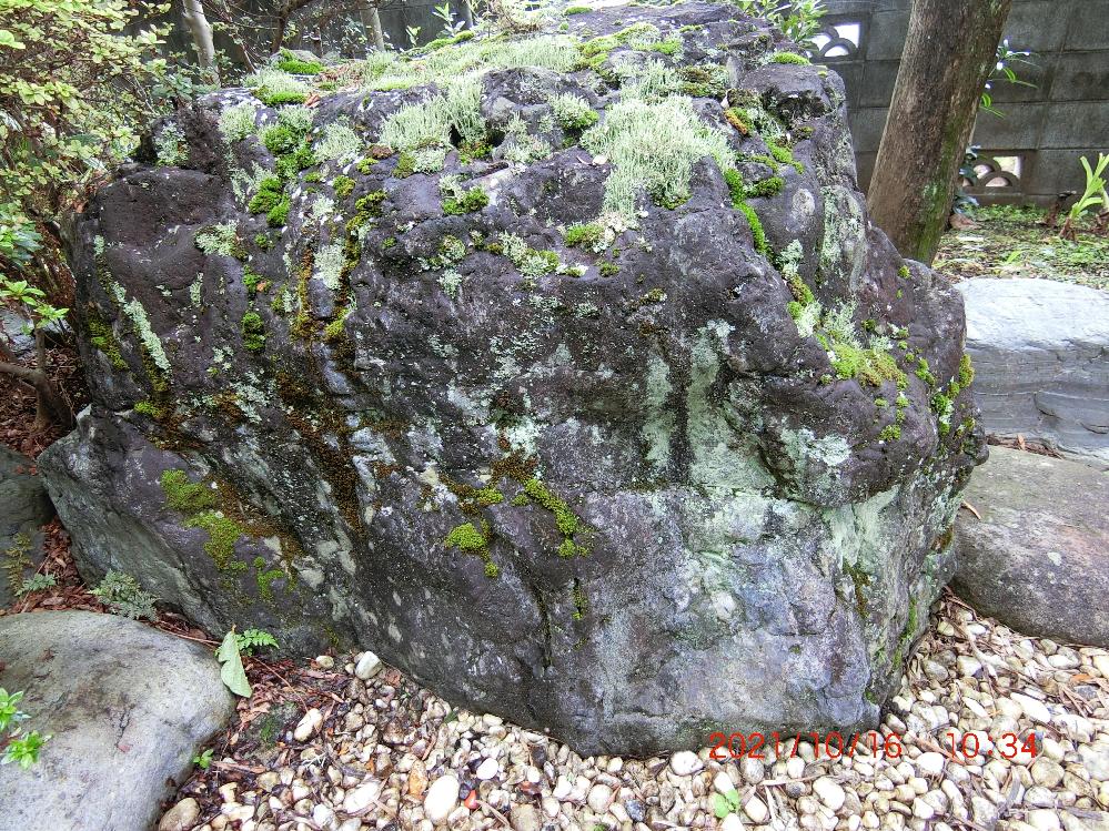 庭石の種類が分かりませんので教えてください。 自宅の敷地に大きな庭石(高さ約70センチ)があるのですが、その種類が分かりません。苔が生えていて、それなりに立派で様子がいいのですが、それなりの価値があるのでしょうか。写真を掲載します。