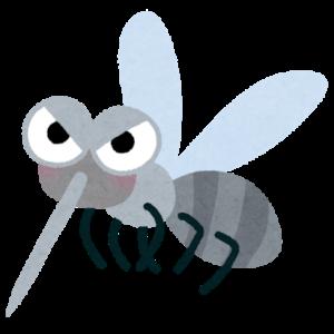 蚊は「刺す、吸う」は正しいけど、「噛む、食う」は間違いですかね?蚊に食われた〜とかモスキートバイトとか。