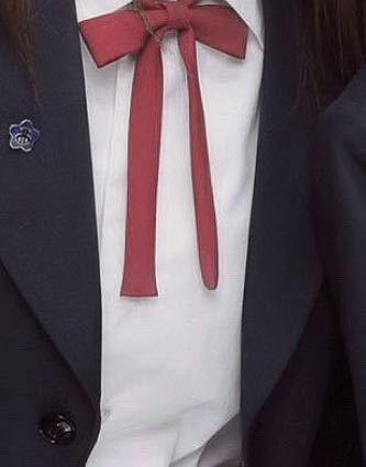 愛知県の名古屋方面の高校でこの制服どのこ学校か分かりますか??