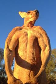 私のような筋肉ムキムキのオーストラリアのメンズカンガルーはどんな時計が似合いますか? メスにもてたいですね(^o^)