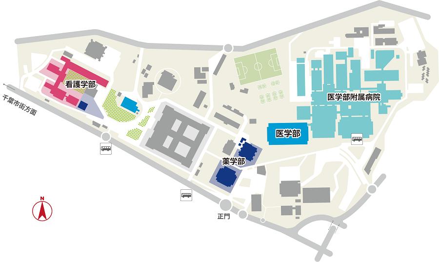 教えて下さい。 千葉大学附属病院の敷地内に自転車の駐輪場はありますでしょうか? ホームページでバス停と駐車場は確認できましたが、駐輪場は記載なしでした。 お近くにお住まい、現在通院中などお詳しい方いらっしゃいましたら、よろしくお願いします。
