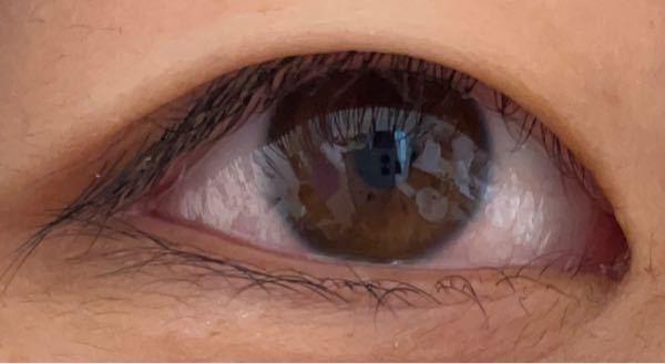ネットでパーソナルカラー診断をしています。 この目は以下のどれになりますか? ①明るい茶色〜黒で黒目の輪郭がハッキリとしている。 ②こげ茶〜黒で深く澄んでいる。 ③赤茶〜黒で白目と黒目のコントラストがあまりない。 ④黒〜漆黒で白目と黒目のコントラストがハッキリしている。