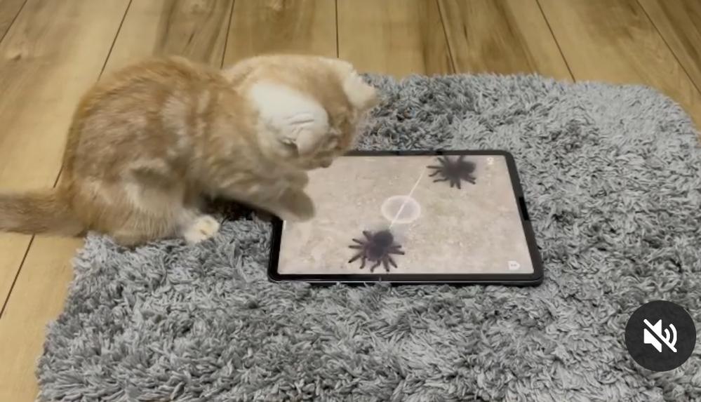 猫おもちゃ 商品名と販売会社名を 教えてください!!!
