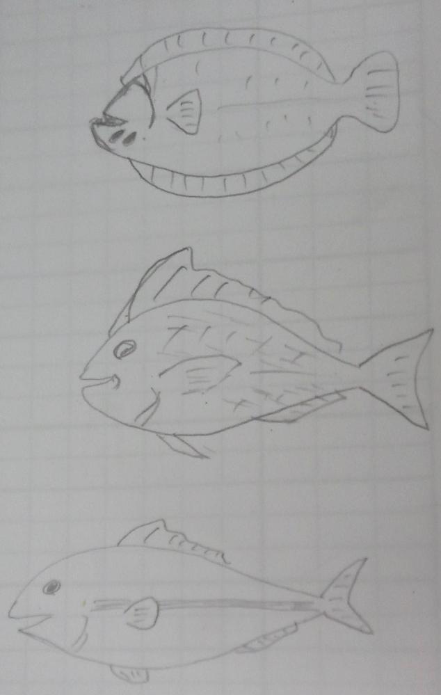 これって何の魚ですか?