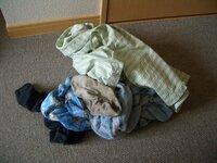 物干し竿ってどうやって購入していますか?  引っ越した部屋にないのでまだ洗濯していません。  ホームセンター等で竿を1本だけ買っても配達してくれますか? その分は有料でしょうか?
