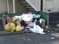 この写真、 以前撮影したうちの近所のアパートのゴミ置き場なんです。最近でも、ゴミ置き場が荒らされたり、汚く使われたりしています。 特に生 ゴミが散乱しているときは臭いも気になります。  通学路なので毎日...