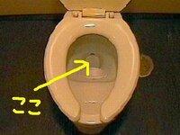 あなたの家のトイレのここんとこに、こっそり ゼラチンを入れておいたら、あなたはどんな反応をしますか?