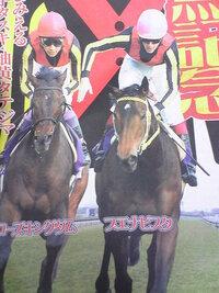 有馬記念(GⅠ)優勝する馬と2着、3着になると思う馬を一頭ずつ選んで下さい 登録馬19頭  (フルゲート16頭)  ブエナビスタ スミヨン 55 ローズキングダム 武豊 55 ルーラーシップ ルメール 55 ヴィクトワールピサ...