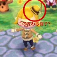 とび森(3ds)について質問です。  この小さな麦わら帽子?ってどこに売ってるのかわかりますか?  入手方法(服屋で何日にでるのか等)も、 教えてください。