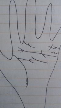 私の手相をざっと絵に書くと… こんな感じです。 運命線は出ていない?!のか分からないので書きませんでした…  線は鎖状です。  頭脳線が独特です。  あとこれは結婚出来ないのでしょうか?涙