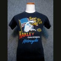 ハーレーダビットソンのシャツを着るのはダサいですか?