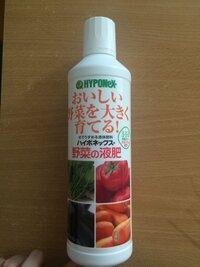貯水機能付きプランターでプチトマトを育てています。そこで貯水している水に液肥を混ぜようと思ってハイポネックス野菜用(5-5-5)を買いました。あとから微粉ハイポネックスがあるのを知ったの ですが、液肥のハイポネックスを買ってしまったので、どうにかして液肥のハイポネックスでプチトマトを育てたいです。 インターネットを調べても微粉ハイポネックスの情報しかでてこなくて困っています。 どれくらい...