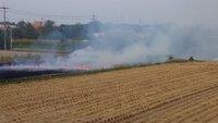 稲刈りした後の畑ってなぜ燃やすのですか?  今日、家の近くの畑で稲刈りした後の畑を燃やしている人がいたので気になり質問しました。