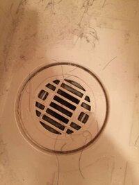 お風呂の排水溝のふたが取れません。 力いっぱい回しても取れません。  水道の人を呼んだ方がいいのでしょうか。  教えてくださいください。