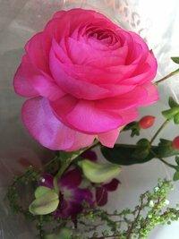 この花はバラであってますかね??なんという花ですか???分かる方宜しくお願いします。